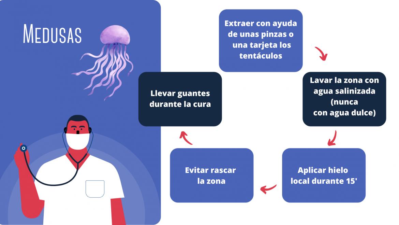 Lesiones por especies marinas y cómo tratarlas
